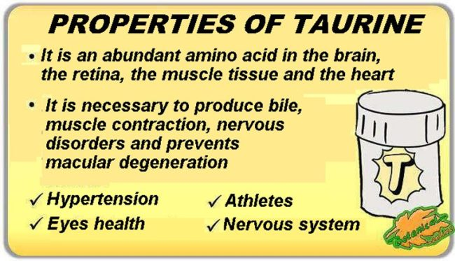 taurine properties and benefits