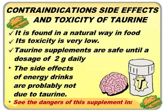 Toxicity, contraindications and adverse effects of taurine
