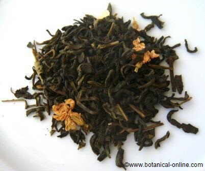 Photo of jasmine tea