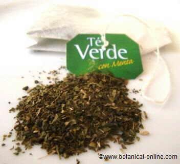 Green tea in a bag