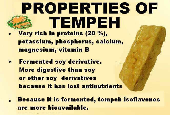 propiedades nutricionales del tempeh de soja y sus beneficios