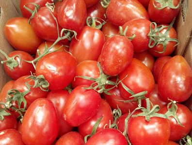 tomatoes for the prostate