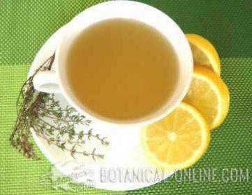 Thyme infusion with lemon
