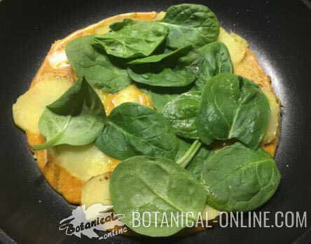 prebiotic potato omelette, with cheese, raw spinach, turmeric and black pepper