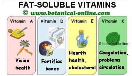 Vitaminas liposolubles, beneficios, propiedades medicinales y funciones