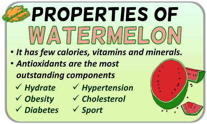Medicinal properties of watermelon