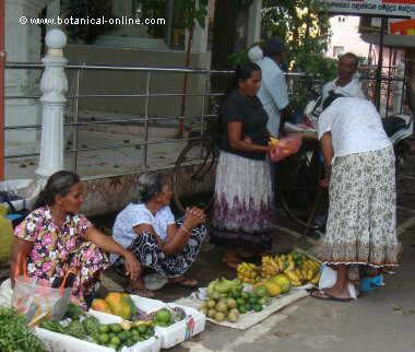 women selling fruit in a market