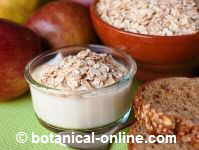 Photo of yogurt with oat flakes and whole wheat bread with oat flakes.