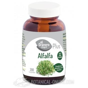 Comprar Alfalfa 200 comprimidos - Propiedades y usos