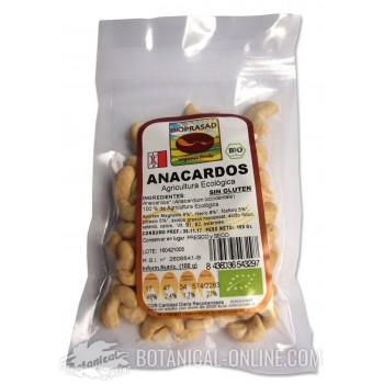 Comprar Anacardos ecológicos crudos (sin sal, no fritos)