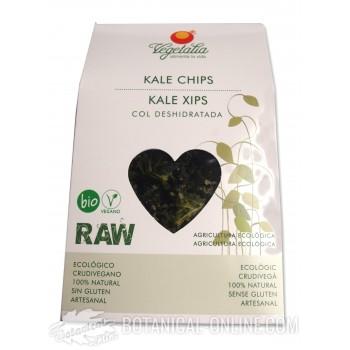 Composición y propiedades chips Kale ecológicos