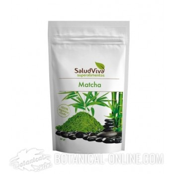 Comprar Té matcha Saludviva y sus propiedades