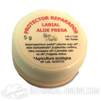 Comprar Protector labial Aloe con karité ecológico