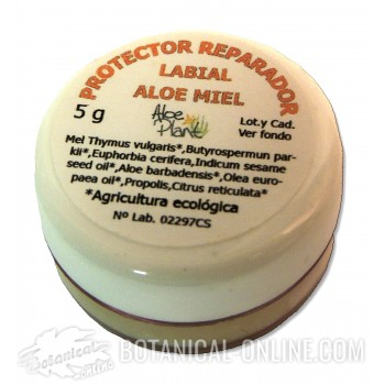 Protector labial aloe miel Aloe Plant