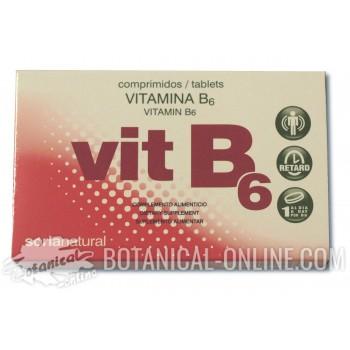 Suplemento vitamina B6 Piridoxina - Propiedades