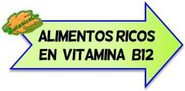 alimentos ricos en b12