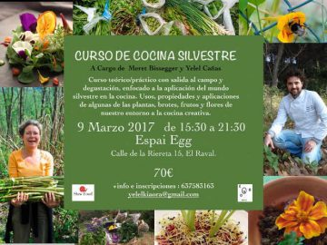 curso plantas silvestres comestibles en barcelona yelel cañas meret bissenger