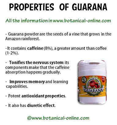 Guarana properties