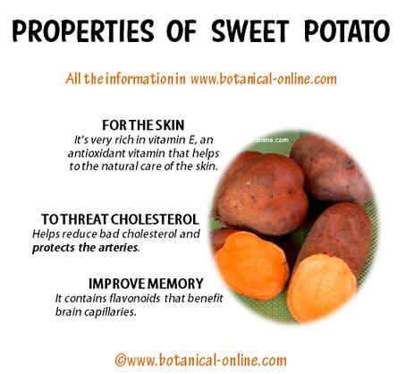 Properties of weet potatoes