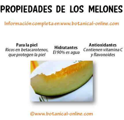 Propiedades melones