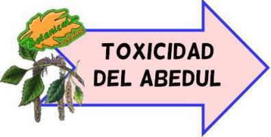 toxicidad del abedul