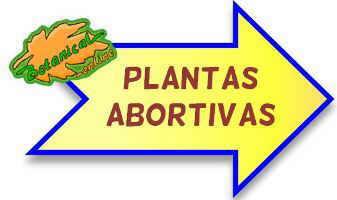 plantas abortivas