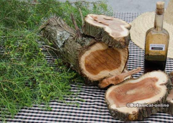 aceite de cade brea de enebro madera oli de ginebro