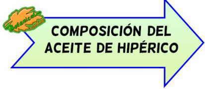 composición aceite hiperico