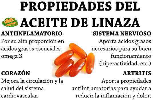 propiedades y beneficios del aceite de linaza