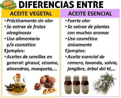 diferencia entre aceites vegetales esenciales