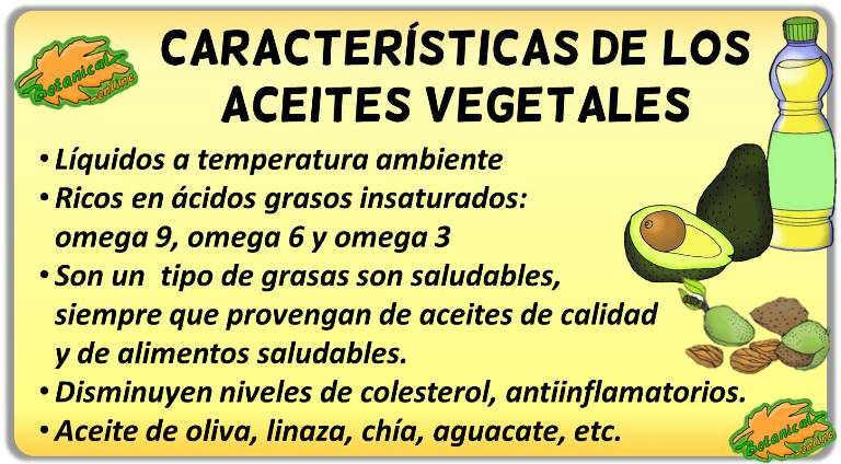 aceites de origen vegetal caracteristicas propiedades beneficios