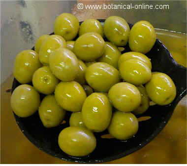 Green marinated olives