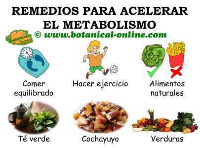 remedios para acelerar el metabolismo