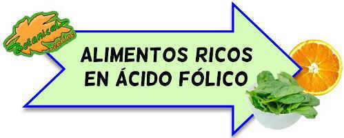 alimentos ricos en ácido folico