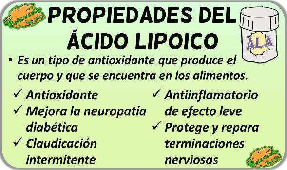 propiedades medicinales y beneficios suplemento acido alfa lipoico