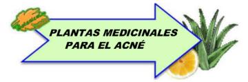 Plantas medicinales para el acné dibujo