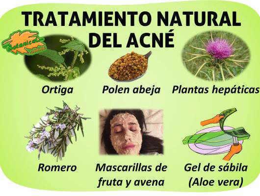 Plantas Medicinales Para El Acné Botanical Online
