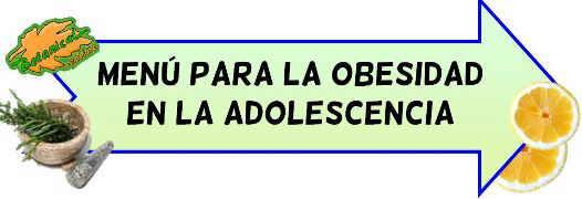 menu obesidad adolescencia