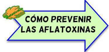 prevencion eliminar aflatoxinas