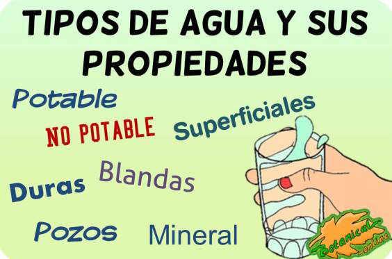 tipos de agua y propiedades