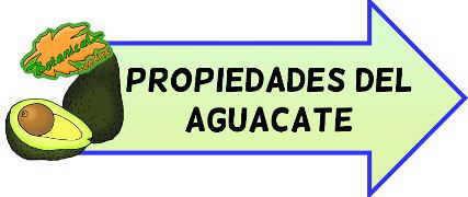 propiedades del aguacate