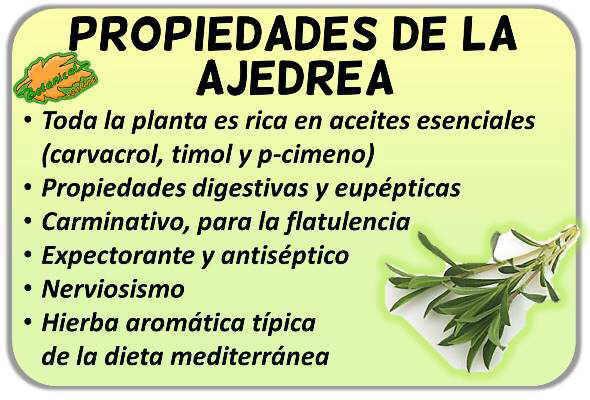 propiedades de la planta medicinal ajedrea beneficios satureja hortensis montana