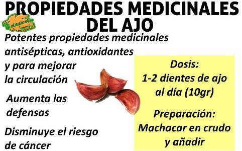 propiedades medicinales del ajo, beneficios
