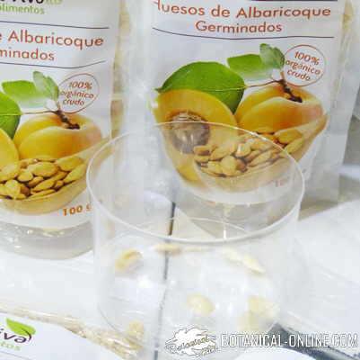 semillas albaricoques vitamina b17 laetrille amigdalina cancer