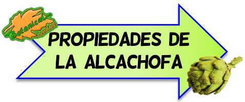 ir a propiedades de la alcachofa