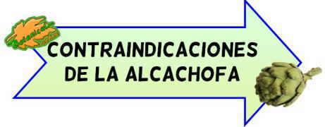 contraindicaciones de la alcachofa