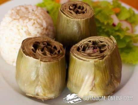 Dieta para el h gado for Cocinar alcachofas al vapor