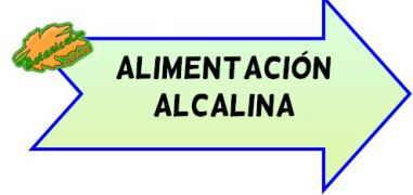 alimentacion alcalina