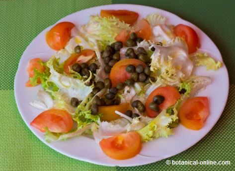 Salad with capers