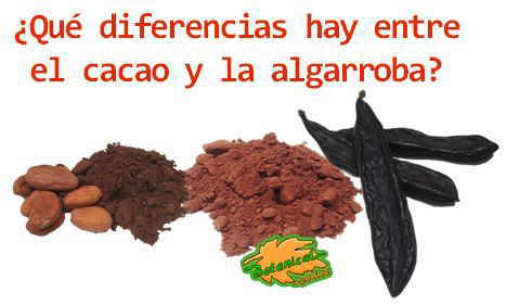 diferencias cacao algarroba chocolate